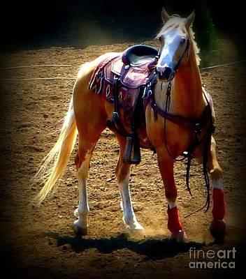 Photograph - Missing Cowboy by Susan Garren