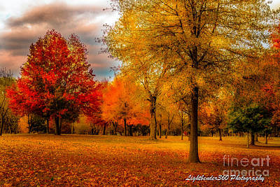Photograph - Missing Fall by Larry McMahon