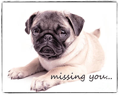 Adorable Photograph - Missing You... by Edward Fielding