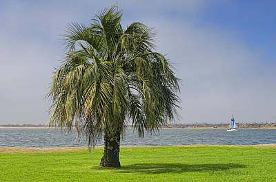 Photograph - Mission Bay San Diego Ca by Marianne Campolongo