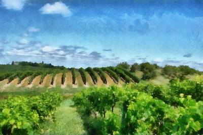 Mission Peninsula Vineyard Ll Print by Michelle Calkins