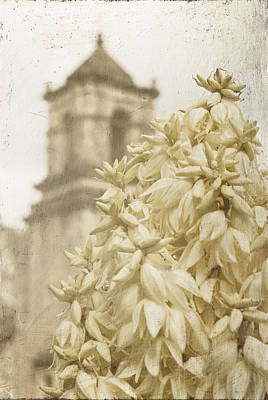 Photograph - Mission San Jose And Blooming Yucca by Renee Hong