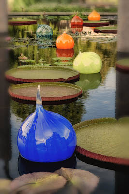 Photograph - Missouri Botanical Garden Six Glass Spheres And Lilly Pads Img 2464 by Greg Kluempers