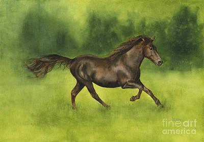 Missouri Fox Trotter Horse Art Print by Nan Wright