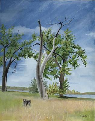 Stall Painting - Missouri River Tree Bismarck North Dakota by David Wolfer
