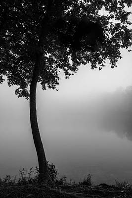 Photograph - Mist And Serenity by Mark Robert Rogers