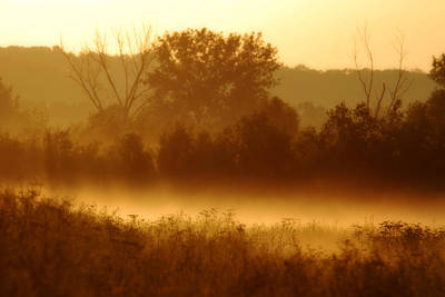 Mist Burning Off The Field Art Print