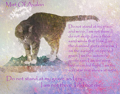 Prose Digital Art - Mist Of Avalon by Wide Awake Arts