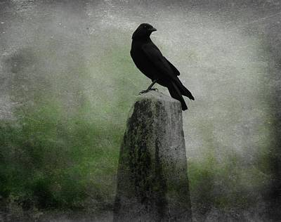 Corvid Digital Art - Raven In A Mist Of Green by Gothicrow Images