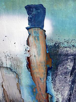 Art Print featuring the photograph Mister Blue by Robert Riordan