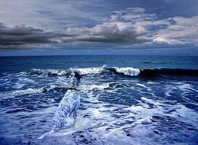 Composite Photograph - Mister Kallinski And The Sea by Joachim G Pinkawa
