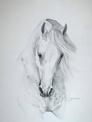 Janina Suuronen Art Painting - Misterioso 2 by Janina  Suuronen