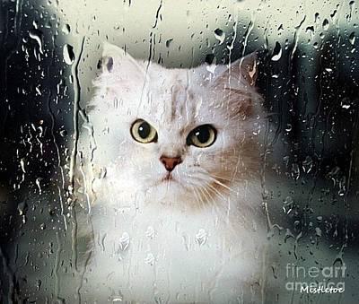 Cute Cat Mixed Media - Mistletoe In The Window by Morag Bates