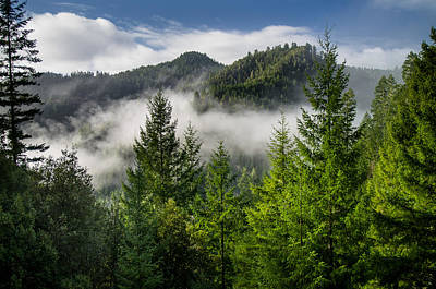 Photograph - Mists Among The Hills by Greg Nyquist