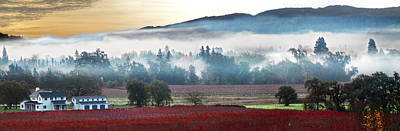 Mists Of Avalon Calistoga Color Art Print by Stan Angel