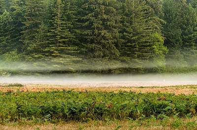 Photograph - Mists On The Prairie by Greg Nyquist