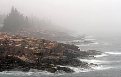 Misty Acadia National Park Seacoast Art Print by Juergen Roth