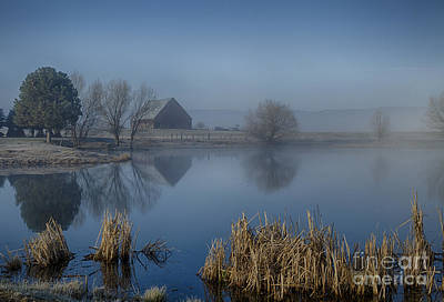 Photograph - Misty Blue by Idaho Scenic Images Linda Lantzy