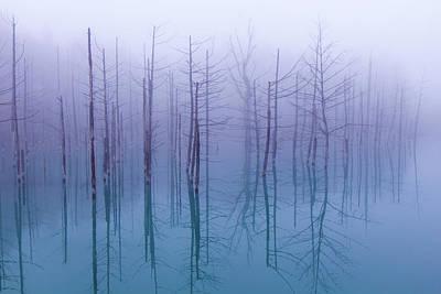 Mist Photograph - Misty Blue Pond by Osamu Asami