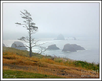 Photograph - Misty Day by Mariarosa Rockefeller
