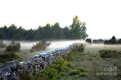 Photograph - Misty Evening by Kennerth and Birgitta Kullman