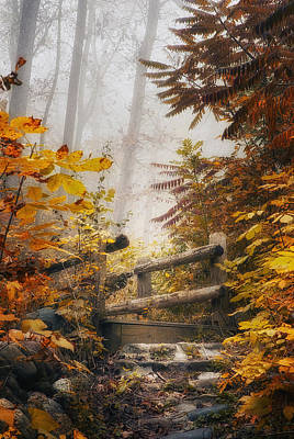 Autumn Landscape Photograph - Misty Footbridge by Scott Norris