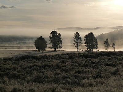 Photograph - Misty Hayden Valley by Tranquil Light  Photography