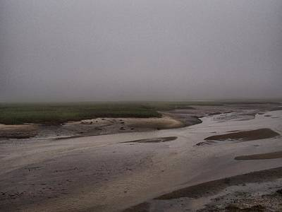 Photograph - Misty Marsh by Pamela Hodgdon