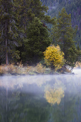 Teton Wall Art - Photograph - Morning Mist by Mike Lang
