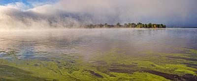Photograph - Misty Mississippi by Leda Robertson