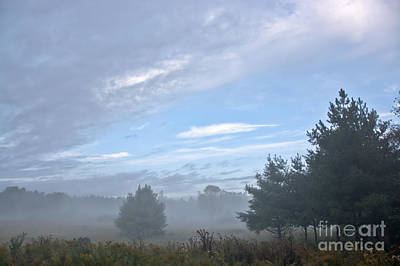 Photograph - Misty Monday by Cheryl Baxter
