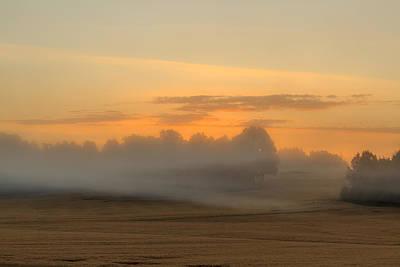 Misty Sunrise Over Cornfield  Art Print by Aldona Pivoriene