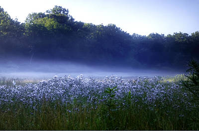 Misty Morning At Vally Forge Art Print by Bill Cannon