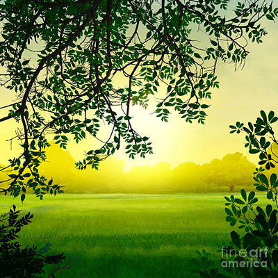 Sun Rays Digital Art - Misty Morning by Peter Awax