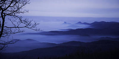 Photograph - Misty Morning by Bonnie Leigh Delar