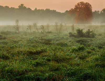 Photograph - Misty Morning by Garvin Hunter