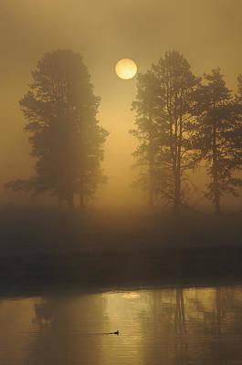 Misty Morning I Art Print by Sandy Sisti