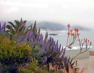 Laguna Beach Painting - Misty Morning In Laguna by Elaine Plesser