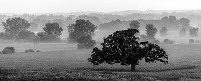 Photograph - Misty Morning In Monochrome by Randy Scherkenbach
