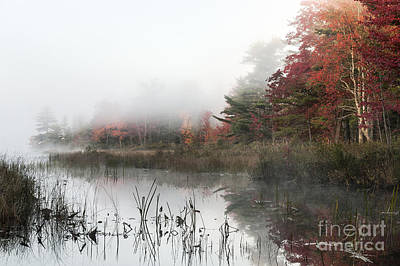 Somesville Photograph - Misty Morning by John Greim