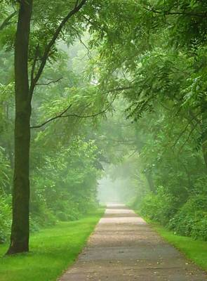 Photograph - Misty Morning by Lori Frisch