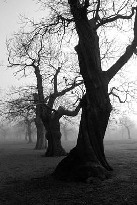 Misty Morning Print by Mark Rogan