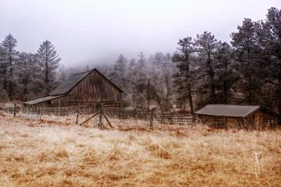 Photograph - Misty Morning by Michele Richter