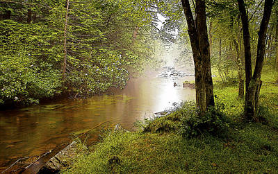 Misty Morning On A Mountain Stream Digital Art Art Print