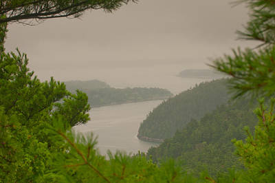 Photograph - Misty Morning On Acadia Mountain by Paul Mangold