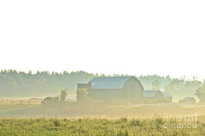 Photograph - Misty Morning On The Farm by Cheryl Baxter