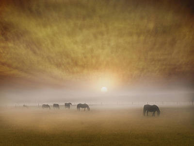 Silver Turquoise Photograph - Misty Morning Skies by Adrian Campfield