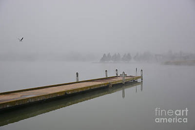 Photograph - Misty Morning by Stuart Row