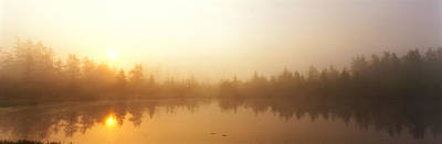 Wetlands Photograph - Misty Morning, Volvo Bog, Illinois, Usa by Panoramic Images