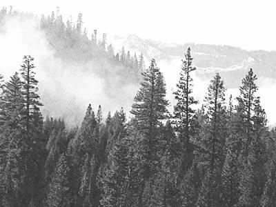 Misty Mountain Art Print by Frank Wilson